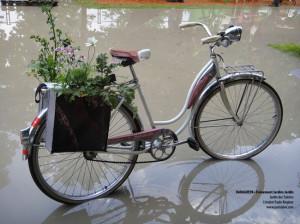 vélo-à-leau-gros-plan
