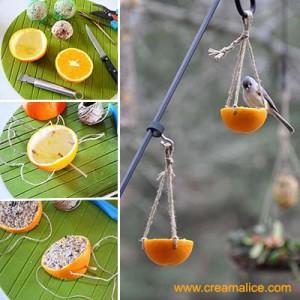 nichoir orange